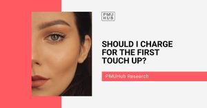 Research about pmu touch up price