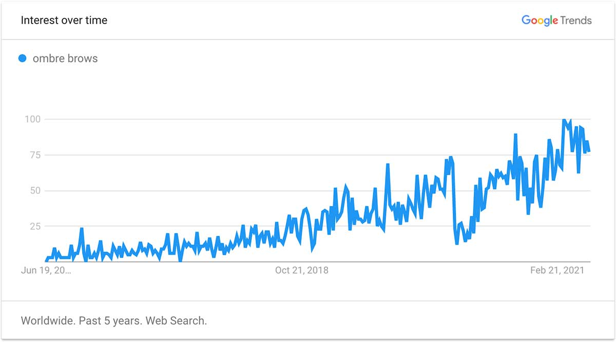 Powder brows Google Trends for past 5 years