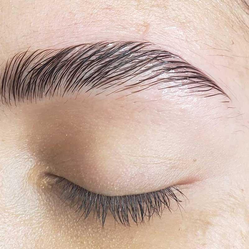 Dewy eyebrows- wet-looking brows