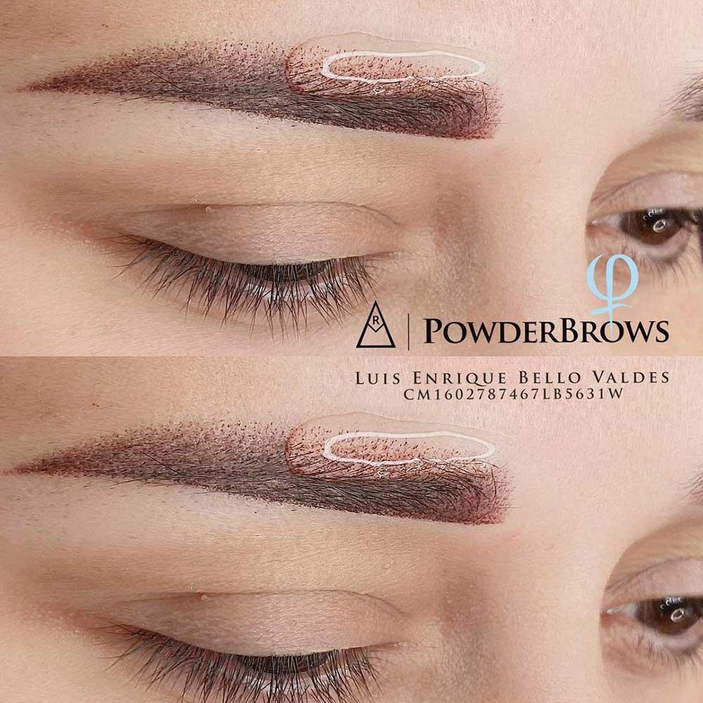 Powder Brows Caterpillar Eyebrows Trend