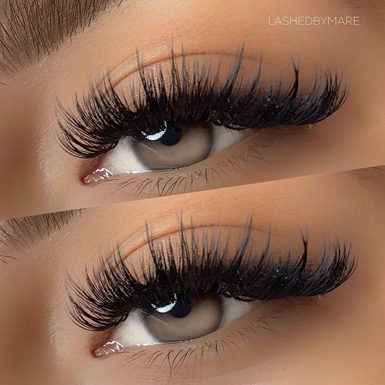 Hybrid Eyelashes Price