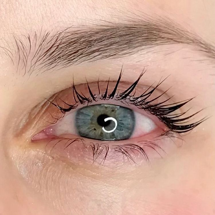 Lash Lift at Home - Step-by-Step Guide, Effects, Risks & Cost by PMUHub