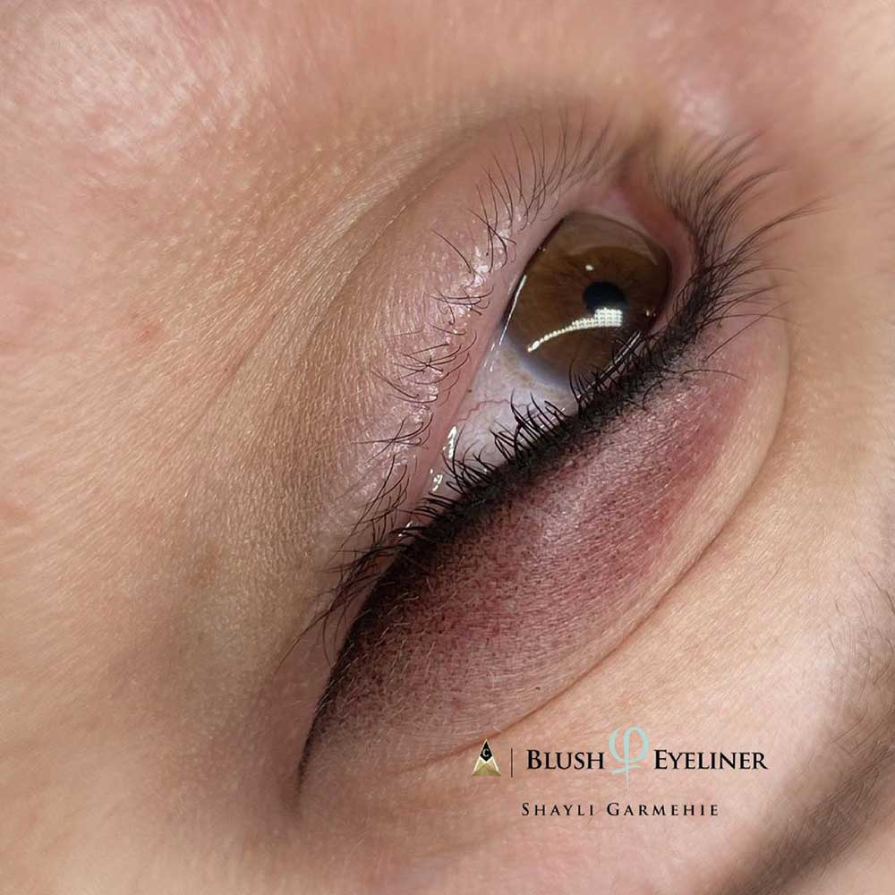 Why Do I Need the First Touch Up for Permanent Eyeliner?