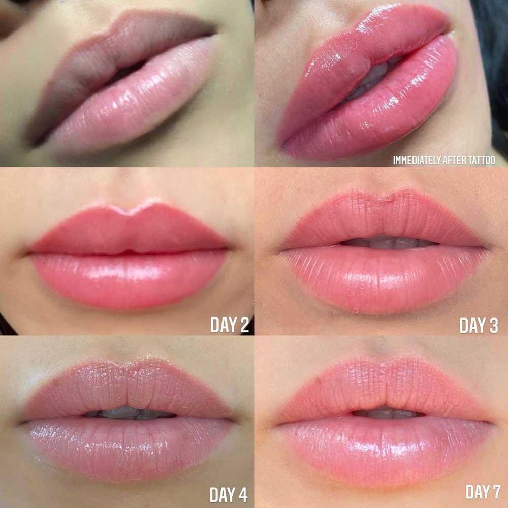 Lip Tattoo Healing Process - Day by Day